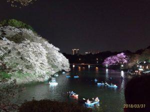 桜を見る幸せ、全人類に届けたい